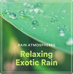 Relaxing Exotic Rain