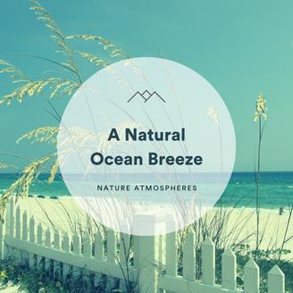 A Natural Ocean Breeze