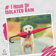 1 Hour Of Isolated Rain