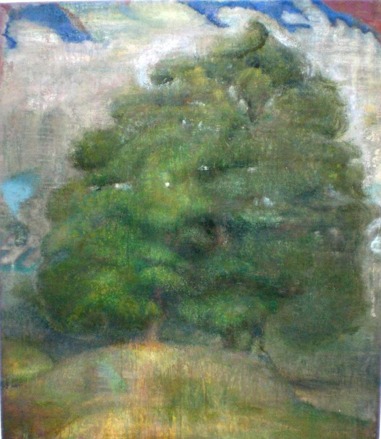 Tree at Woodstock