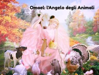 Omael: l'Angelo dottore degli Animali