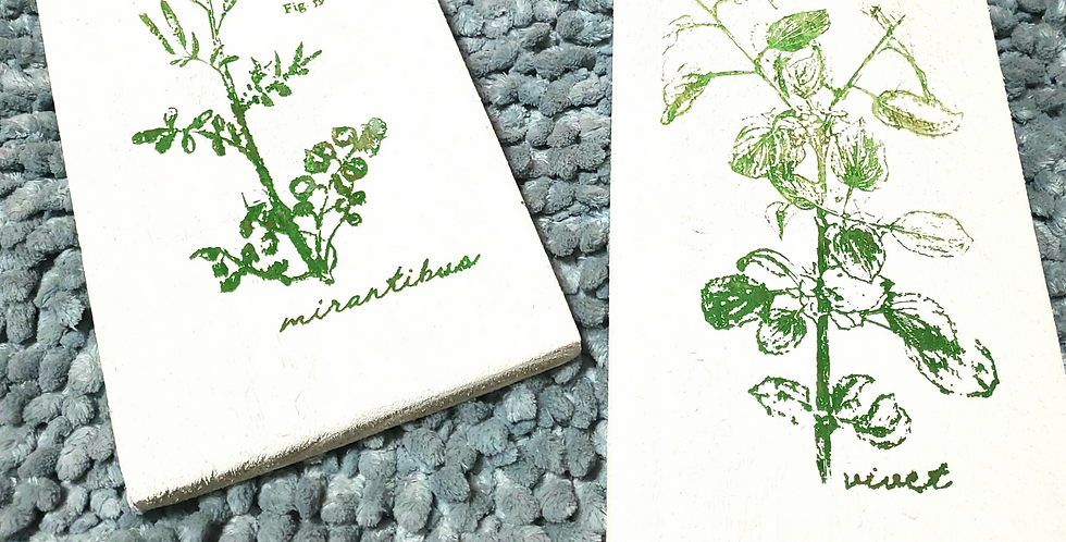 Rustic Botanicals Decor (2 signs)