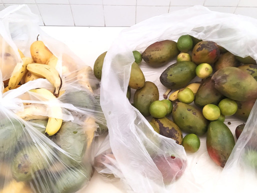 Mesa Brasil retorna com as atividades e faz doação de alimentos ao Projeto Tia Egle