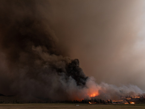 The Tamarack Fire 014