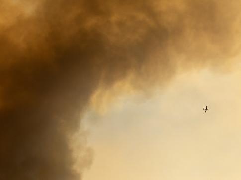 The Tamarack Fire 009