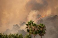 LNU Lightning Complex Fire