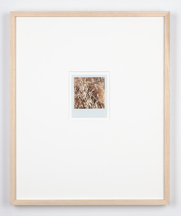 R.S by the Mew Stone, Wembury, August '19, 2020, rose gold leaf on polaroid in tulip frame (series of 7 works), 48.5 x 40 x 4.5 cm