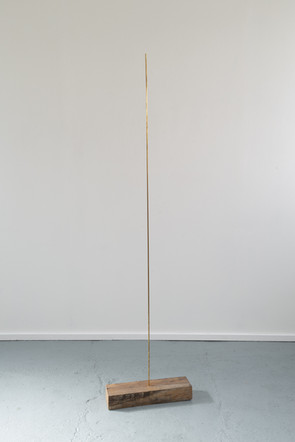 He/Him/His, 2019, brass, oak, 45 x 183 x 20 cm