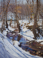 Snowy Creek on the Haw River