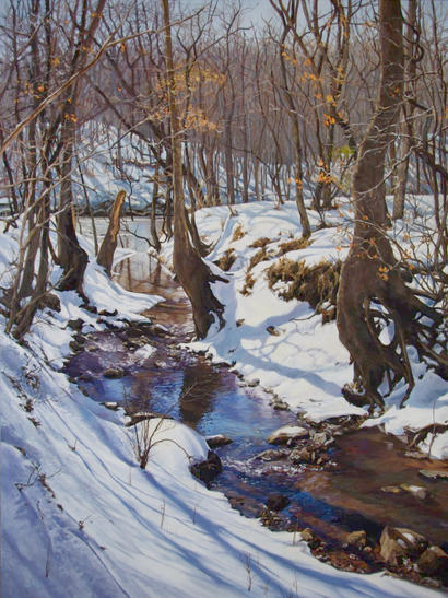Icy Creek on the Haw River
