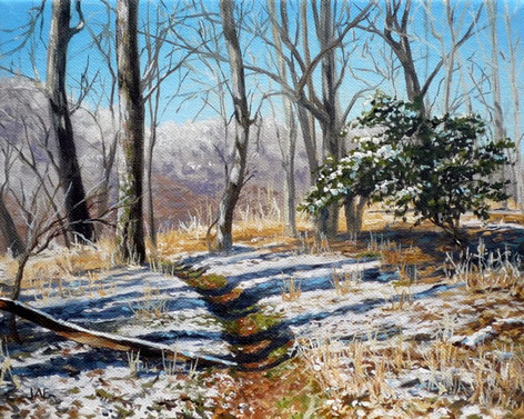 A Light Snow on the Haw