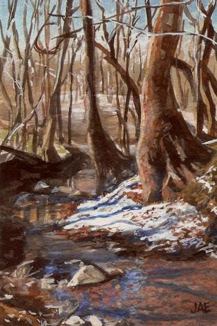 Light Snow on the Creek