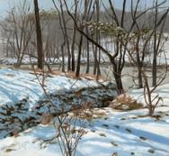 Snowy Creek Banks