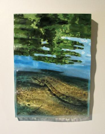 Watersnake in Jordan Lake