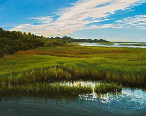 Salt Marsh at Bear Island