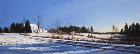Salvia Light Snow Morning