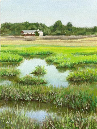 Salt Marsh mid tide