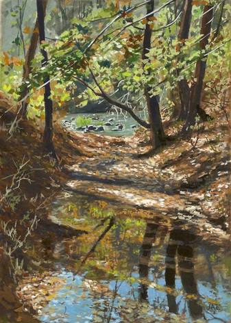 Fall Creek November