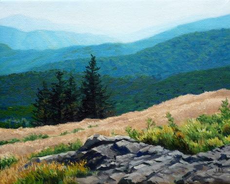Roan Mountain Study, Rocks