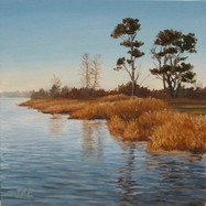 Pungo Lake