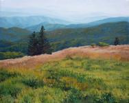 Roan Mountain Study, Two Trees
