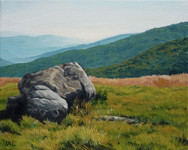 Roan Mountain Study, On The Bald
