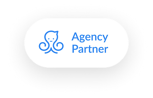 Manycat agency partner