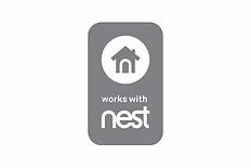 Nest.webp