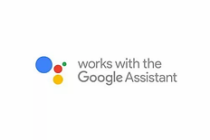 Google-Assistant.webp