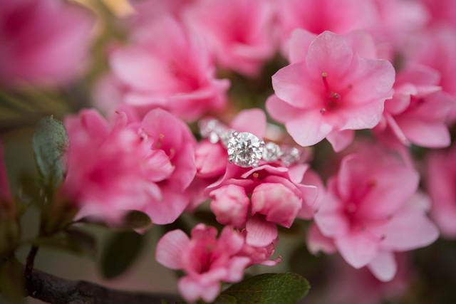 Kirstin & Shawn || Charleston, WV Engagement