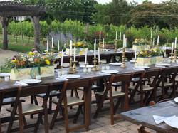 TJBF Dinner in the Vines