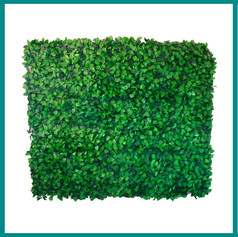 Fave Props - Simple Green Leaf Wall.jpg