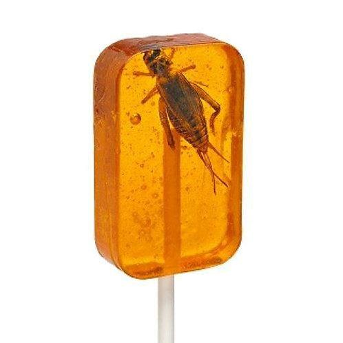 Hotlix Orange Cricket Sucker
