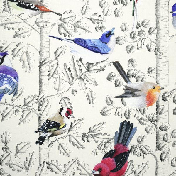 Oiseaux sur décor gris