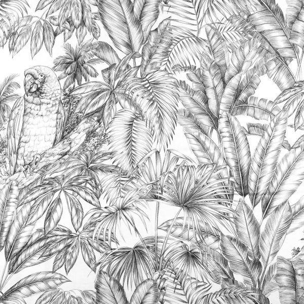 Palmiers noir et blanc