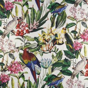 Perroquets et fleurs