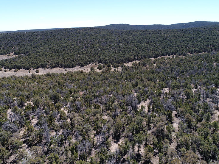 5.12 Off-Grid Acres With AMAZING Views! (Edgewood, NM)