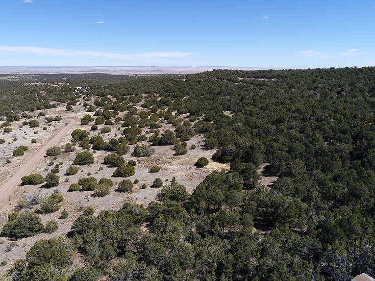 5.06-Acre Building Site with Power! (Indian Hills, Torrance County, NM)