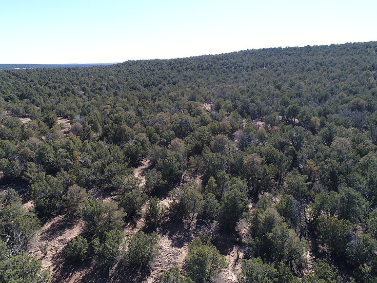 5.00-Acre Off-Grid Hideaway! (Indian Hills, Torrance County, NM)