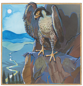 """""""Falcon""""    2016"""