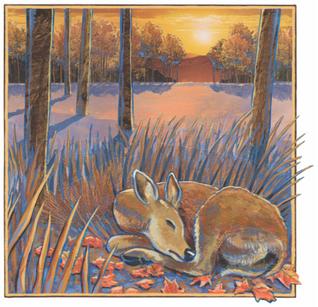 """""""Deer""""   2016"""