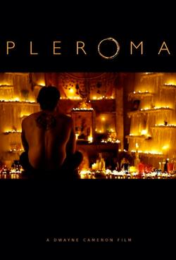 Pleroma Poster