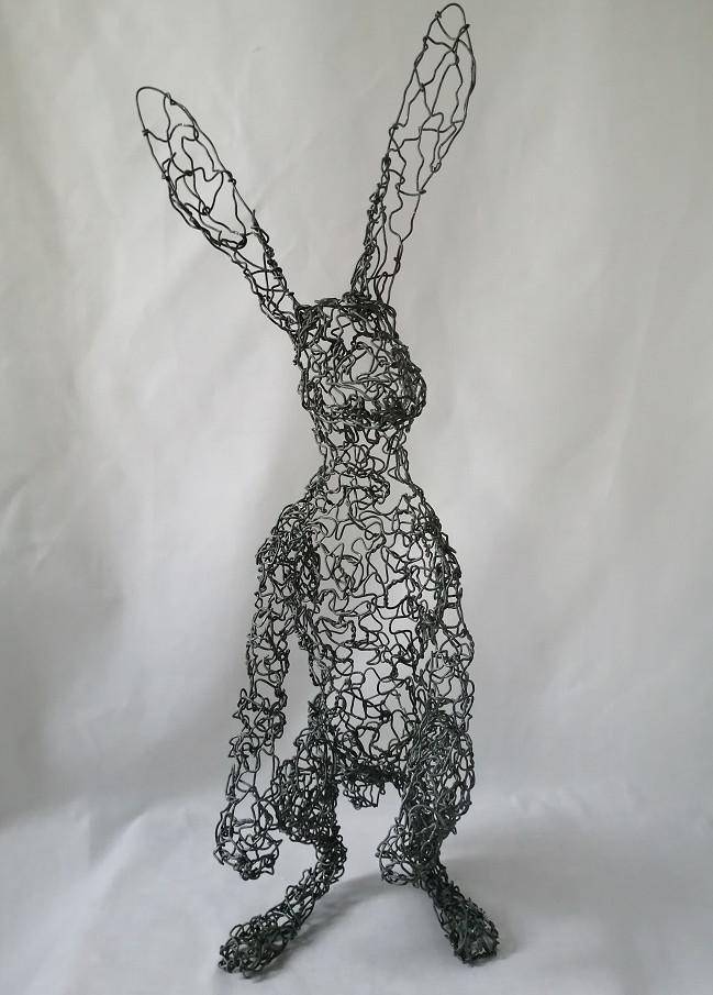 Alerted Hare