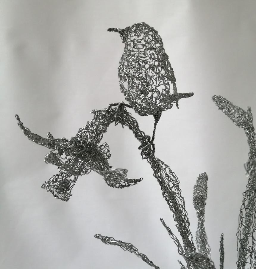 Wren on daffodil detail