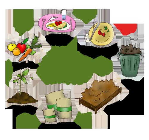 Compostagem no ciclo de vida da matéria orgânico