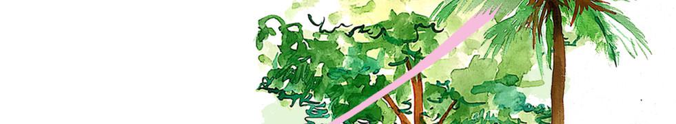 Concreta Paisagismo - Escala de Vegetação