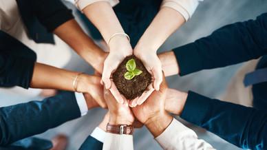 Como a Sustentabilidade pode ajudar o seu Negócio?