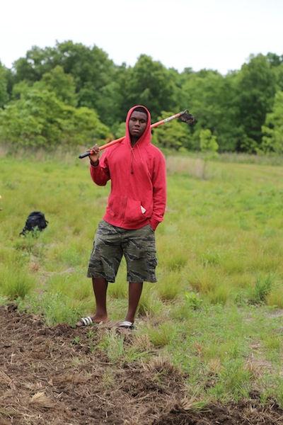 Volunteer on Farm, June 6-12 (AM)
