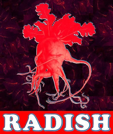 Flashy Radish