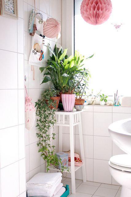 צמחיה בחדר השירותים. עיצוב הבית